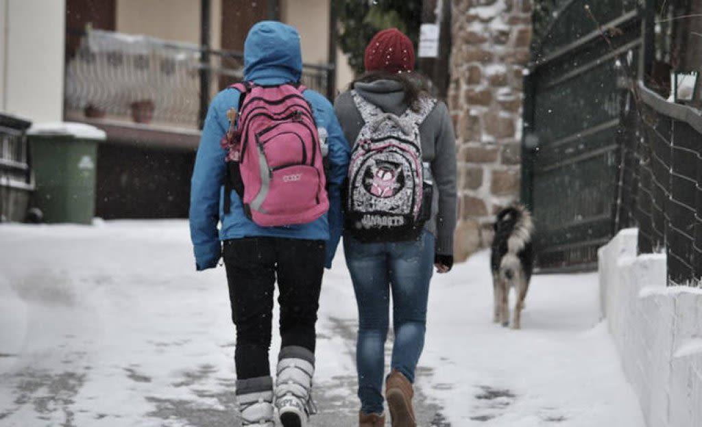 Κλειστά και αύριο Τρίτη τα σχολεία του Δήμου Διστόμου Αράχωβας Αντίκυρας