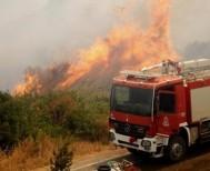 Τι αναφέρει η Πυροσβεστική Υπηρεσία Βέροιας για την πυρκαγιά στην Συκιά του Δήμου Βέροιας