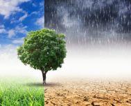 Για να έχουμε αύριο, κοιτάμε κατάματα την βιοκλιματική αλλαγή