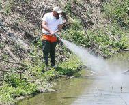 Στην Περιφέρεια Κεντρικής Μακεδονίας - Νωρίτερα από ποτέ άρχισε το φετινό πρόγραμμα καταπολέμησης των κουνουπιών