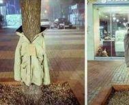 Γιατί στη Λάρισα ντύνουν τα δέντρα με μπουφάν!
