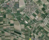 Πωλούνται στα όρια Ακρολίμνης και Αρχαγγέλου δύο χωράφια κολλητά, 25 και 11 στρέμματα με βερύκοκα 6 ετών