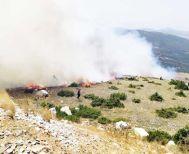 Αναζωπύρωση λόγω ισχυρών ανέμων χθες το απόγευμα στη φωτιά της Ζωοδόχου Πηγής