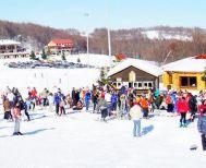 Δημοτικό συμβούλιο Νάουσας Δεν «πέρασε» η εκμίσθωση του Χιονοδρομικού Κέντρου των 3-5 Πηγαδιών
