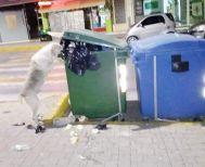Ο σκύλος στην αποκομιδή…πριν το απορριμματοφόρο!