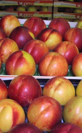 ΑΠΟΨΗ Το success story (των φρούτων) σκόνταψε στην Αχαρνών