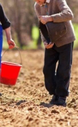 Ισχυρά κίνητρα από τον Μ. Βορίδη για να παραμείνουν οι συνταξιούχοι στο χωράφι