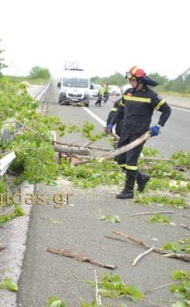 Βεροιώτης ο 50χρονος που έχασε τη ζωή του στο δυστύχημα της Εγνατίας, από  δέντρο που έπεσε στο Ι.Χ που επέβαινε
