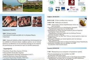 Το 1ο Ευρωπαϊκό Φεστιβάλ Αίγειου και Πρόβειου Κρέατος  και Τοπικών Προϊόντων στα Βασιλικά του Δήμου Θέρμης