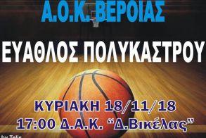 Μπάσκετ Γ' Εθνική ΑΟΚ Βέροιας - Εύαθλος Πολυκάστρου