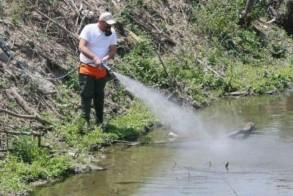 Σύσκεψη φορέων για την αντιμετώπιση του προβλήματος των κουνουπιών