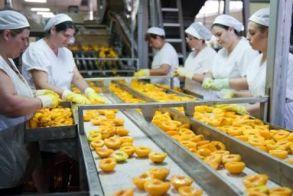 Με αφορμή τα 9 κρούσματα κορονοϊού σε Μονάδα της Ημαθίας…  Κ. Αποστόλου: Η έγκαιρη λήψη μέτρων μηδένισε   τα κρούσματα στις κονσερβοποιίες των χιλιάδων   εργαζομένων, εν μέσω πανδημίας