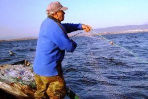Απαγορεύεται η αλιεία σε Αξιό, Αλιάκμονα, Λουδία, Γαλλικό, Εδεσσαίο, Στρυμόνα και Αγγίτη