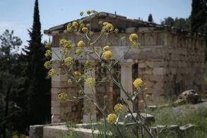 Παγκόσμια Ημέρα Μνημείων: Ελεύθερη αύριο η είσοδος στους υπαίθριους αρχαιολογικούς χώρους