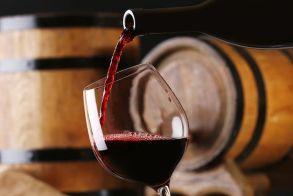 Το κρασί στην υγεία των ανθρώπων - Δ. Στυλιανίδης, επ. Δ/ντής Ινστιτούτου Φυλλοβόλων Δέντρων
