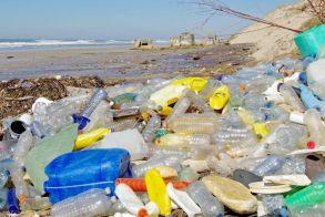 WWF:  Ενας μέσος άνθρωπος καταπίνει  περίπου 250 γραμμάρια πλαστικών σωματιδίων ετησίως!