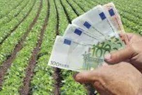 Επιχειρηματικότητα στις αγροτικές περιοχές: η ανάγκη έμπρακτης και ουσιαστικής ενίσχυσής της