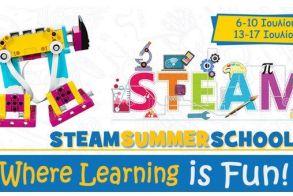 STEAM SUMMER SCHOOL από τη ΔΙΚΤΥΩΣΗ!