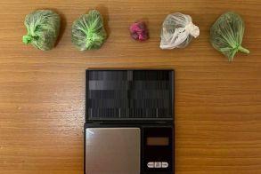 Σύλληψη για ναρκωτικά από το Τμήμα Ασφάλειας Αλεξάνδρειας μετά από έρευνα και την συνδρομή του «Ακύλα»