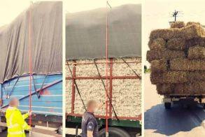 Έλεγχοι από την Τροχαία Βέροιας στα υπέρβαρα και παραφορτωμένα φορτηγά