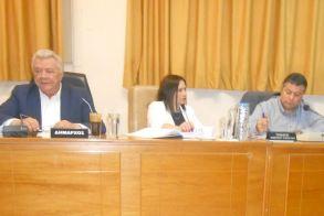 Δημοτικό Συμβούλιο Αλεξάνδρειας - Ο αιφνίδιος και άδικος θάνατος  του υιού του Νίκου Ανεσίδη, επισκίασε τη συνεδρίαση