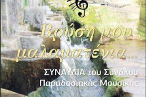 Συναυλία του Μουσικού Σχολείου Βέροιας με τραγούδια για το νερό