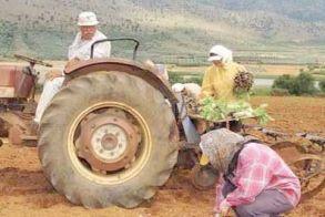 Επιστολή Γκυρίνη προς τον Υπουργό Αγροτικής Ανάπτυξης για την ενίσχυση των αγροτών που επλήγησαν από την πανδημία