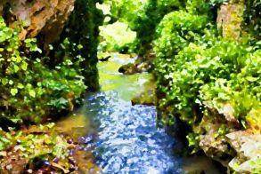 Βόλτα και ξενάγηση στους αρχαιολογικούς χώρους και τα μνημεία του Δήμου Νάουσας