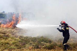 133.000 ευρώ από τους ΚΑΠ στους τρείς Δήμους της Ημαθίας για Πυροπροστασία