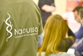 7 - 8 - 9 Δεκεμβρίου  Ο «οινοτουρισμός» στο επίκεντρο των τριήμερων  εκδηλώσεων «Νάουσα, πόλη του οίνου 2018»