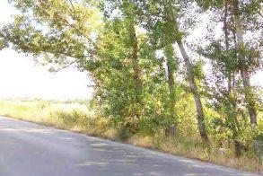 Δευτέρα και Τρίτη κυκλοφοριακές ρυθμίσεις στο δρόμο Νησέλι – Κυψέλη λόγω κοπής δένδρων