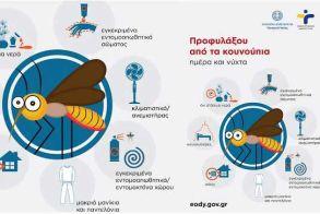 Δήμος Αλεξάνδρειας: Ενημέρωση για τα μέτρα προφύλαξης από τα Κουνούπια