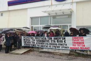 Συνδικάτο Γάλακτος , Τροφίμων και Ποτών  Ημαθίας-Πέλλας:  Συγκέντρωση διαμαρτυρίας και υπόμνημα με τα αιτήματά τους κατέθεσαν χθες στον ΟΑΕΔ Βέροιας