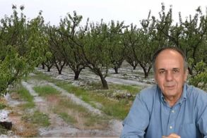 Ενημέρωση σχετικά με τις πρόσφατες χαλαζοπτώσεις από τον βουλευτή του ΣΥΡΙΖΑ Χρήστο Αντωνίου