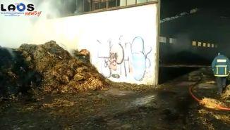 Αποπνικτική η ατμόσφαιρα στην Πατρίδα από τη φωτιά στο παλιό εργοστάσιο