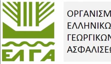 Δήμος Βέροιας: Τηλεφωνικά θα δίνονται οι εκτιμήσεις ζημιών από την χαλαζόπτωση του 2019