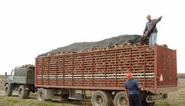 Προς εξόφληση οι οφειλές στους εργαζόμενους της Ελληνικής Βιομηχανίας Ζάχαρης