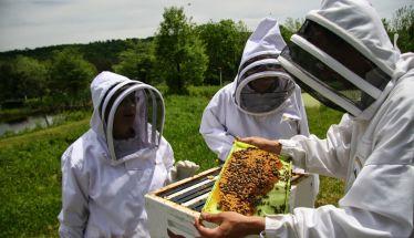Δύο τμήματα τριήμερης   εκπαίδευσης μελισσοκόμων από τον ΕΛΓΟ ΔΗΜΗΤΡΑ