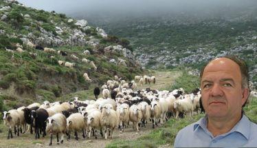 Υμνολογία της Μεγάλης Τετάρτης και συνέντευξη με τον Στέργιο Κύρτσιο για τις τιμές των αμνοεριφίων στον AKOU 99.6 στη Σοφία Γκαγκούση