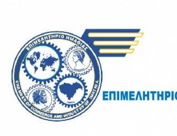 Ενημερωτική εκδήλωση για τις επιδοτούμενες δράσεις του ΕΠΑνΕΚ στο Επιμελητήριο Hμαθίας