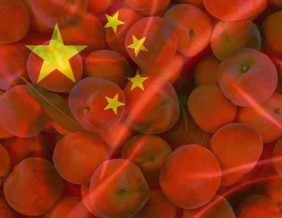 Κάντε το καλύτερο για να κερδίσουμε την αγορά  του «κινέζου γίγαντα»