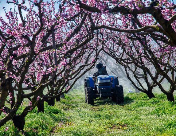 Σε διαβούλευση το νέο, εκσυγχρονισμένο Εθνικό Σχέδιο Δράσης για την ορθολογική χρήση γεωργικών φαρμάκων