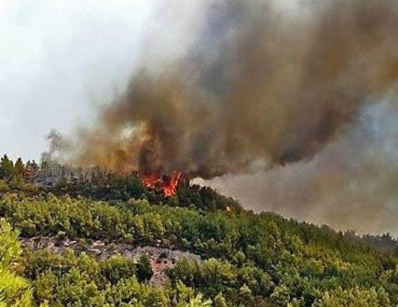 19 στρέμματα δασικής έκτασης κάηκαν από πυρκαγιά στα «Καβάκια»   Συκιάς και την «Κοπατσίνα» Δασκίου