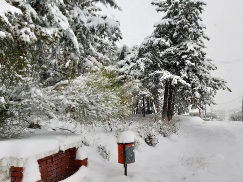 Πυκνό χιόνι με παγωνιά και στην Ημαθία έφερε η «Μήδεια» -Αλυσίδες σε όλο το δίκτυο του Νομού