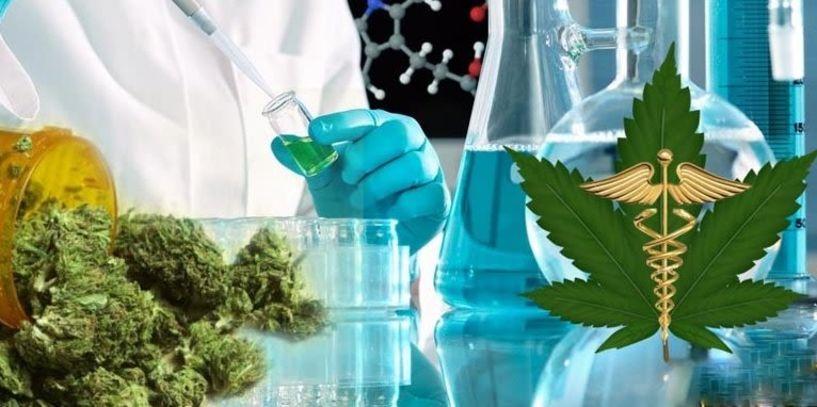 Μεγάλη επένδυση μονάδας φαρμακευτικής κάνναβης στο δημοτικό συμβούλιο Νάουσας