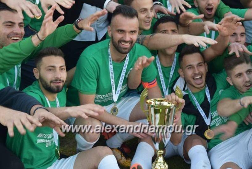 Κύπελλο ερασιτεχνών Ήττα - αποκλεισμός στο 88'(0-1)  για τον Μ. Αλέξανδρο Τρικάλων από τα Γιαννιτσά