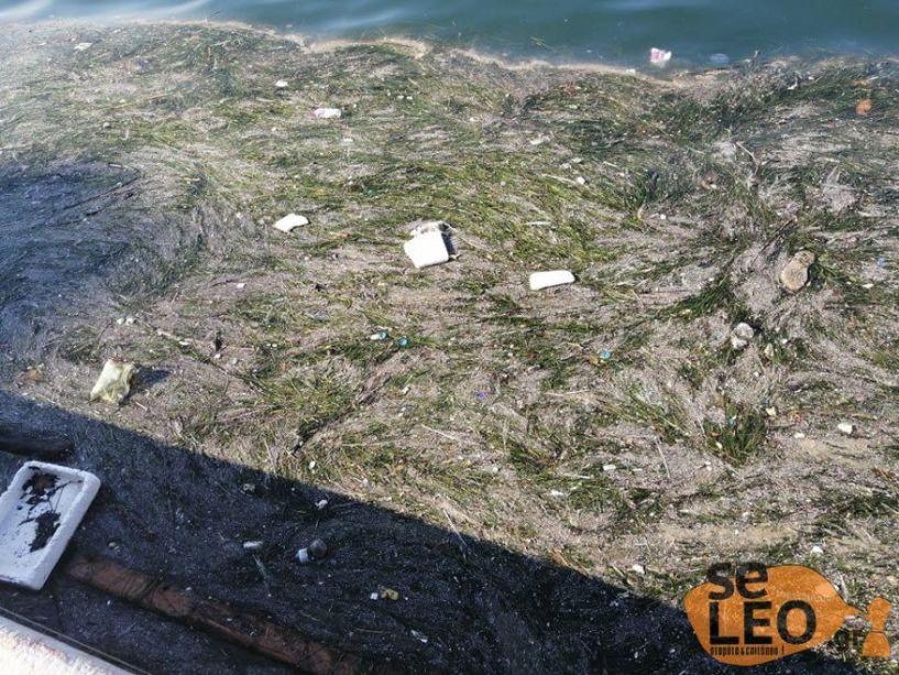 Θεσσαλονίκη: Ο Θερμαϊκός για άλλη μια φορά γέμισε με σκουπίδια