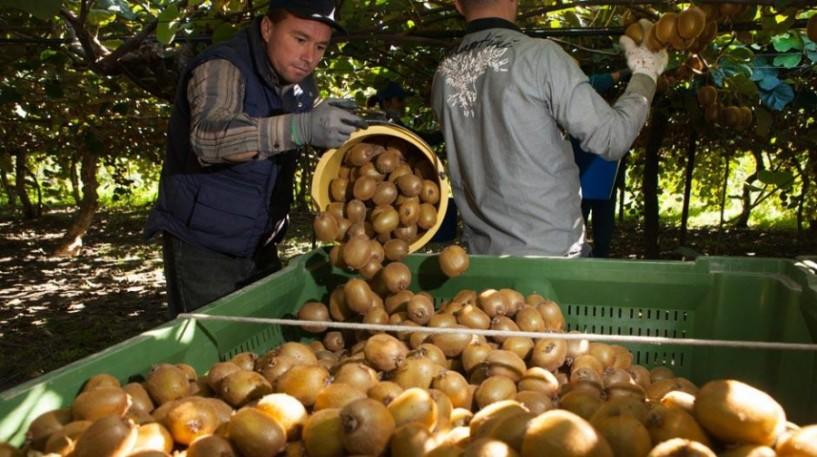 Στάσιμα τα αγροτικά προϊόντα στην κινέζικη αγορά