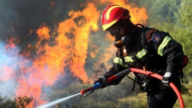 Προσοχή: Υψηλός κίνδυνος δασικής πυρκαγιάς  σήμερα στην περιοχή μας