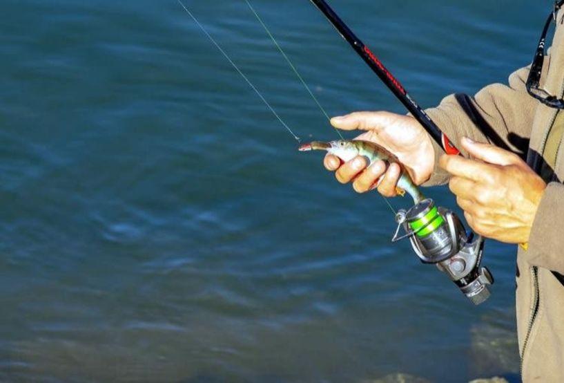 Απαγόρευση αλιείας στην Περιφερειακή Ενότητα Ημαθίας
